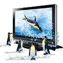 penguins, d icon