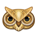 owl,animal,bird icon