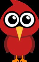 cardinal icon
