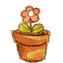 pot, flower icon