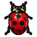bug, ladybird, insect icon