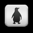 animal,penguine icon