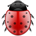insect, animal, ladybird, bug icon