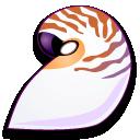 nautilus,pompilus icon