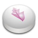 adobe,bridge icon