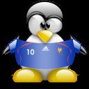 france, animal, penguin icon