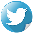 communication, tweet, twitter, logo, bird, network icon