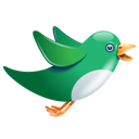 animal, twitter, bird icon