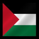 Palestine flag icon