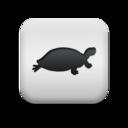 animal,turtle icon