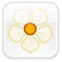 magnolia,badge,social icon