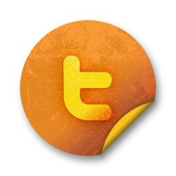 social, sn, social network, twitter icon