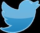 media, twitter, bird, social icon