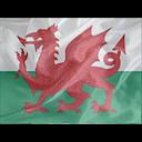 Regular Wales icon