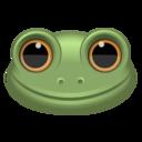 frog,animal icon