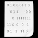 Mimetypes binary icon