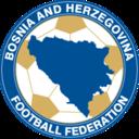 Bosnia and Herzegovina icon