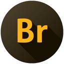 1br, cc icon