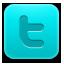 social network, social, twitter, sn icon
