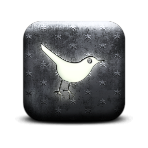 bird, twitter, social, animal, social network, sn icon