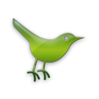 social, bird, twitter, animal, social network, sn icon