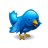 blue, twitter, animal, bird icon