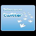 08, twitter icon