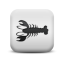 animal,lobster icon