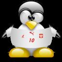 penguin, animal, poland icon