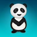 animal, panda, bear icon