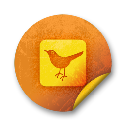 social, twitter, animal, square, bird, social network, sn icon