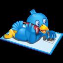 Phone, Twitter icon