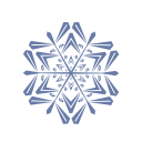 snow, flake icon