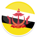 Brunei icon