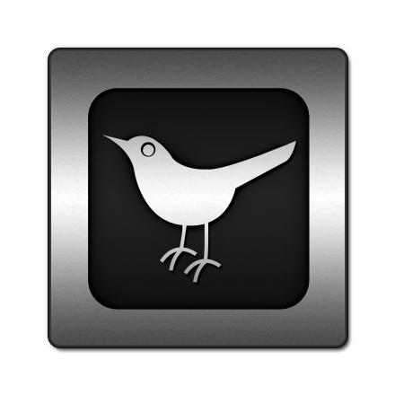 social, animal, bird, twitter, social network, square, sn icon