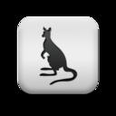 animal,kangaroo icon