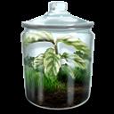 Grassy, Terrarium icon