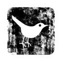 square, bird, twitter icon