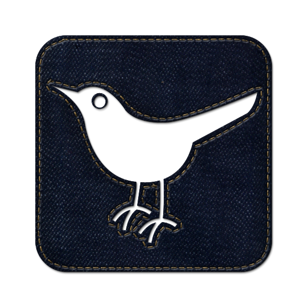 bird, denim, sn, animal, jean, twitter, social network, square, social icon