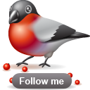 Animal, Bird, Bullfinch, Twitter icon