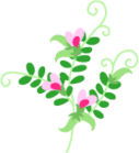 narrow,leaved,vetch icon
