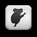 animal,koala,bear icon