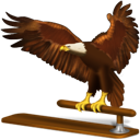 Animal, Bird, Eagle, Thunderbird icon