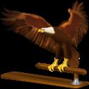 thunderbird, eagle, animal, bird icon