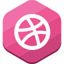 social network, dribbble, portfolio icon