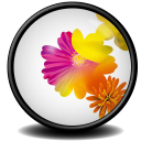 Illustrator CS icon