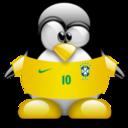 brazil,penguin,animal icon
