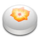 adobe,illustrator,cs icon