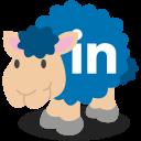 social network, linkedin, sheep icon