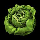 lettuce, food, fruit, vegetable icon
